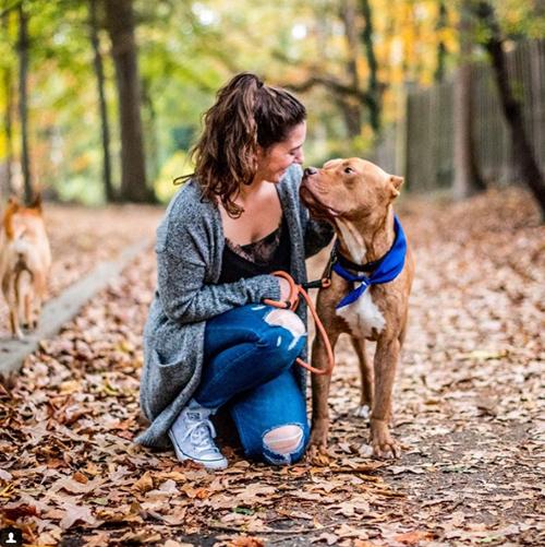каникулы для приютских собак