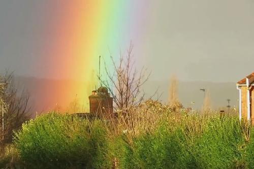невероятно яркая радуга
