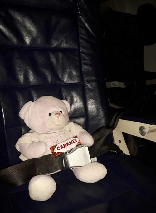 мишка в первом классе самолёта
