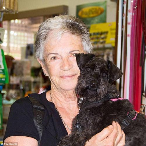 женщина-грумер ударила собаку