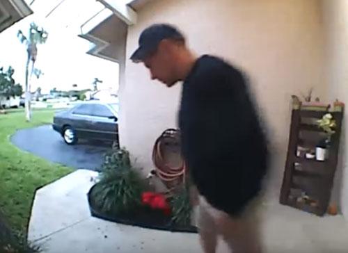 утка напала на мужчину