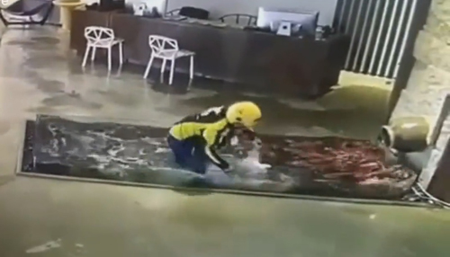 курьер искупался в пруду с рыбками