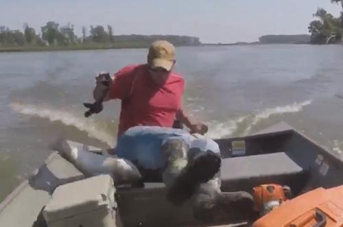 рыба прыгнула из воды в лодку