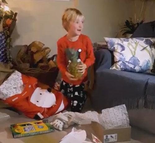 ребёнок заказал санте ананас