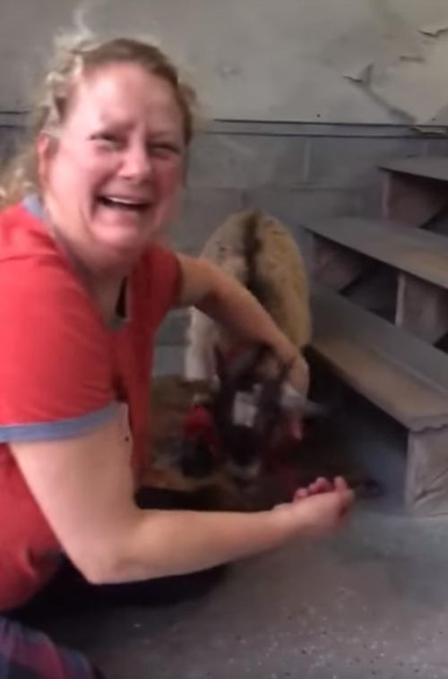 женщине подарили козу