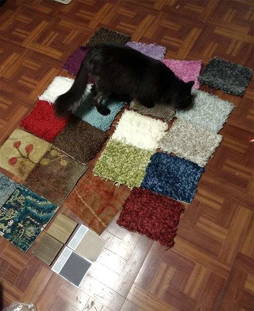 гора образцов ковровых покрытий
