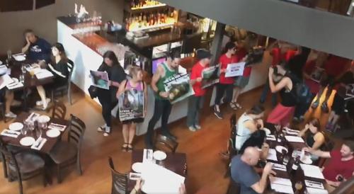 веганы ворвались в ресторан