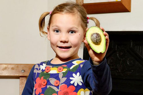 целительная диета из авокадо