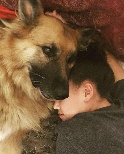 фото девочки с собакой