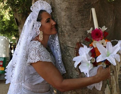 символический брак с деревьями