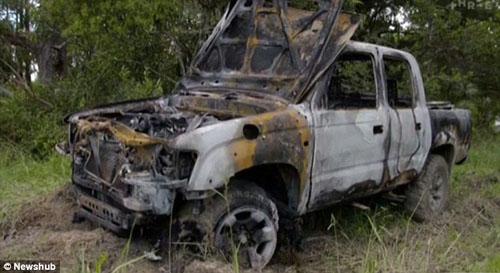 преступник сжёг собак в машине