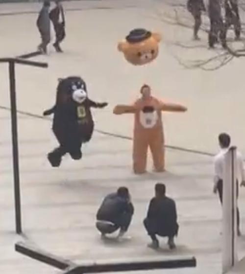 медведь потерял голову