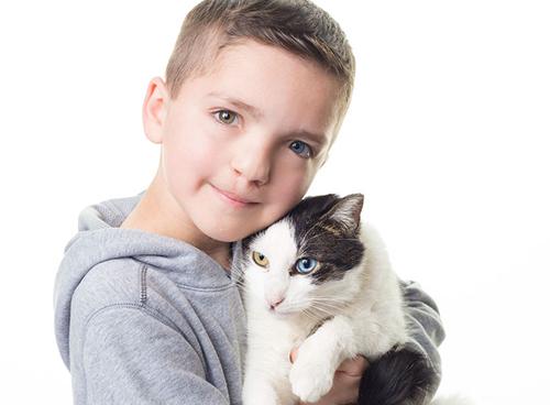 кошка похожа на хозяина