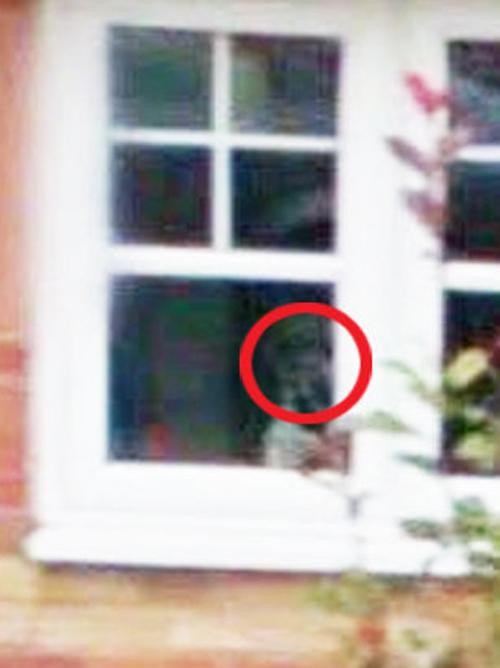призрак в окне кухни