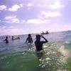 дельфины подняли всем настроение