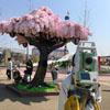 скульптура цветущей сакуры