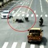 пассажиры упали на дорогу