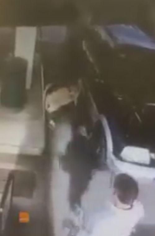 осёл сбежал из машины