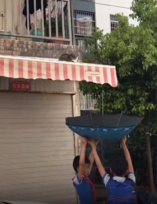 спасение с помощью зонтика