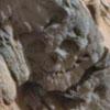 окаменелый череп на марсе