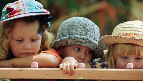богатые дети более терпеливы