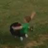 собака и бегущий мальчик