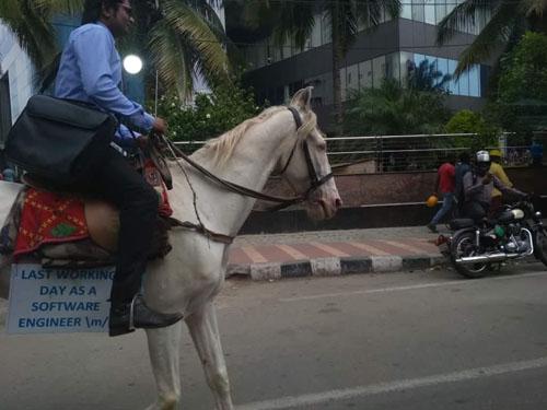 на работу верхом на лошади