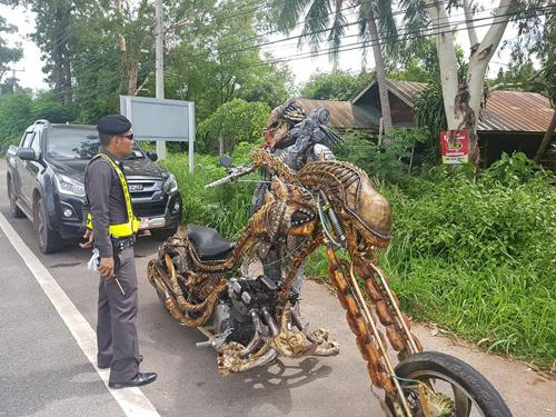 полицейский остановил пришельца