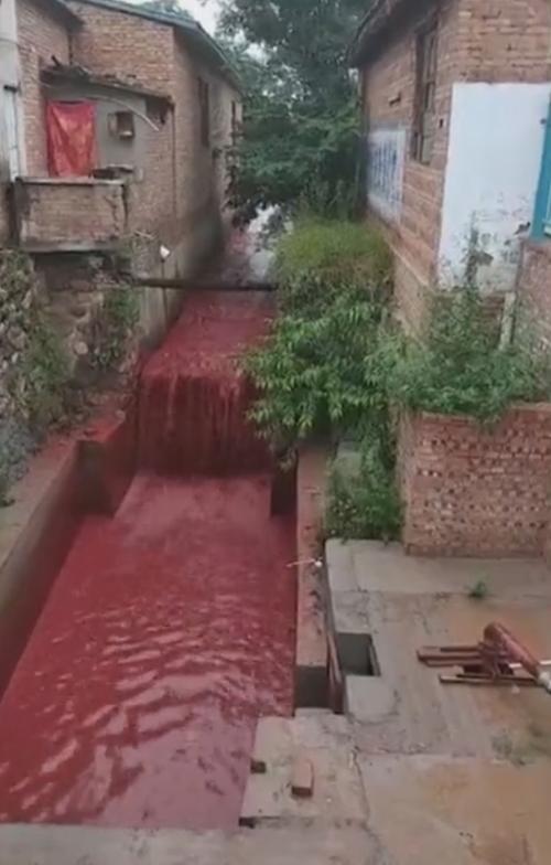 река окрасилась в кровавый цвет