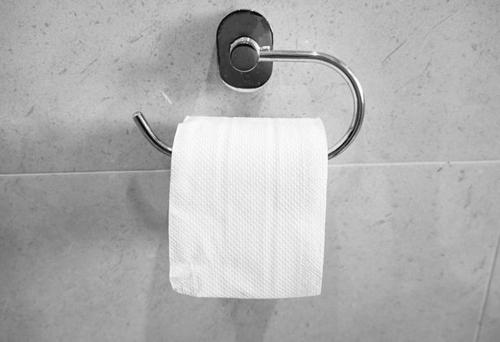 дискуссия о туалетной бумаге