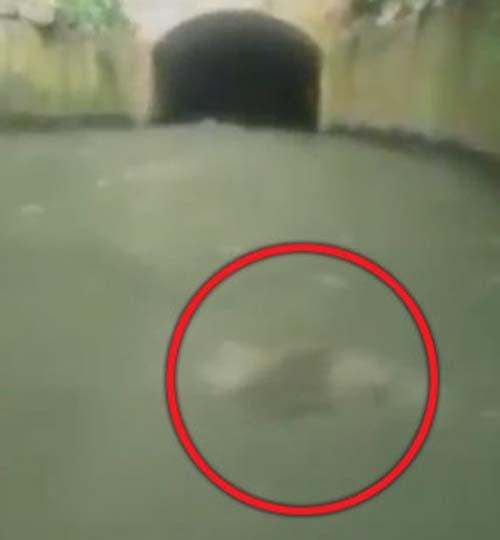 жуткий призрак под водой