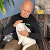 домашняя кошка-вегетарианка