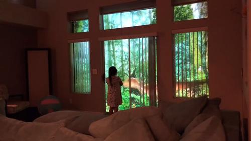 динозавры поселились за окном