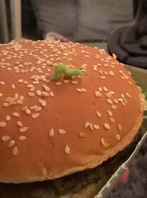 гусеница решила съесть гамбургер