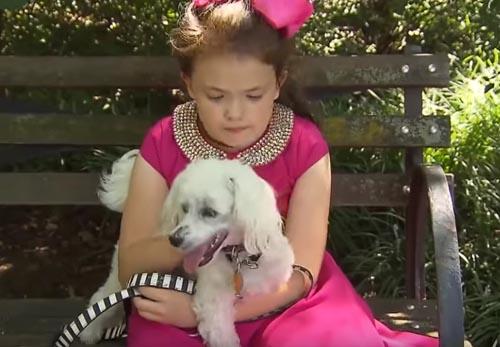 девочка на прогулке с собакой