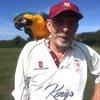 попугай на матче по крикету