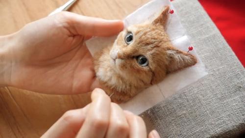 реалистичные портреты кошек