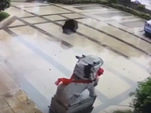 зонтик вернулся к владельцу
