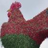 статуя петуха из перца