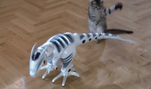 котёнок и робот-динозавр