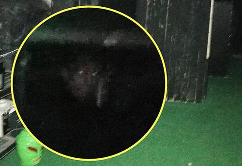 демоническое лицо призрака