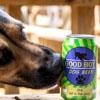 супруги создали пиво для собак