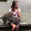 обезьяны на коленях туристки