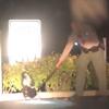 полицейский спас скунса