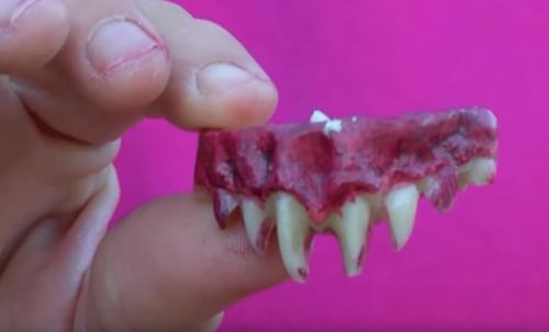фальшивые зомби-зубы