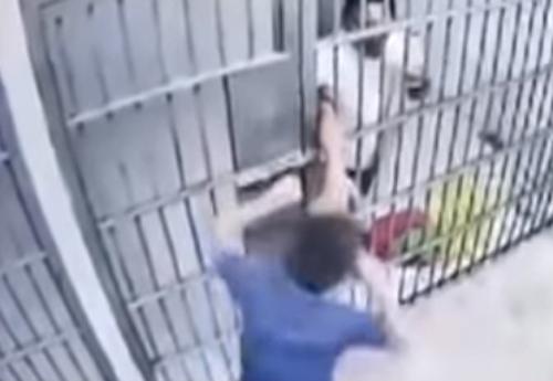 заключённый сбежал из камеры