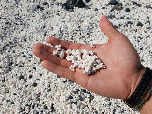 пляж усыпанный попкорном
