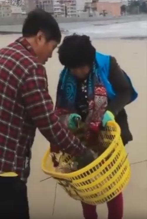 супруги чистят пляж от мусора