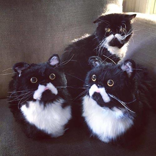 тапочки в виде кошек и собак