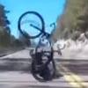 велосипедист столкнулся с оленем